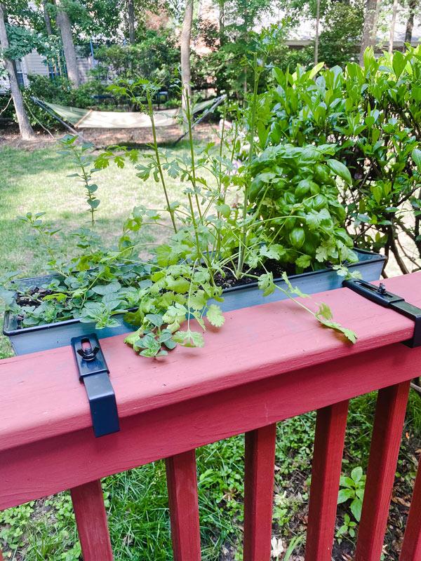 Outdoor Porch Ideas for Summer